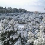 15 dicembre 2007 - zona Pantanella (foto di Sara Letizia)