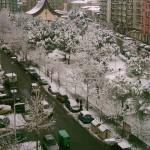 Dicembre 2007 - Piazza Aldo Moro (foto di Giorgio Cicerale)