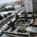 Dicembre 2007 - Zona Macchia Gialla (foto di Roberta Mastroluca)