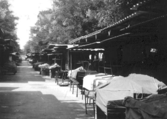 Il mercato della frutta di via Rosati