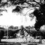 1980 - Panorama dal boschetto della Villa