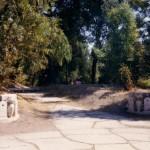Anni 80 - Boschetto della Villa - Le due sculture marmoree che si vedono nella foto sono quelle che erano locate all'uscita della tettoia dalla parte dei pescivendoli al mercato coperto di via Arpi