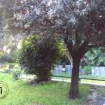 Il giardino delle fragranze