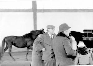La sua passione per i cavalli